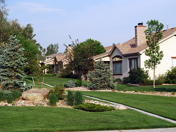 Homes in Poudre River Ranch